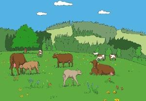 1_cow_milk