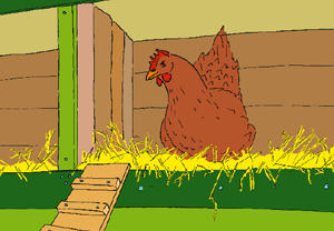 2_hen_eggs