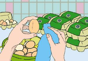 3_hen_eggs